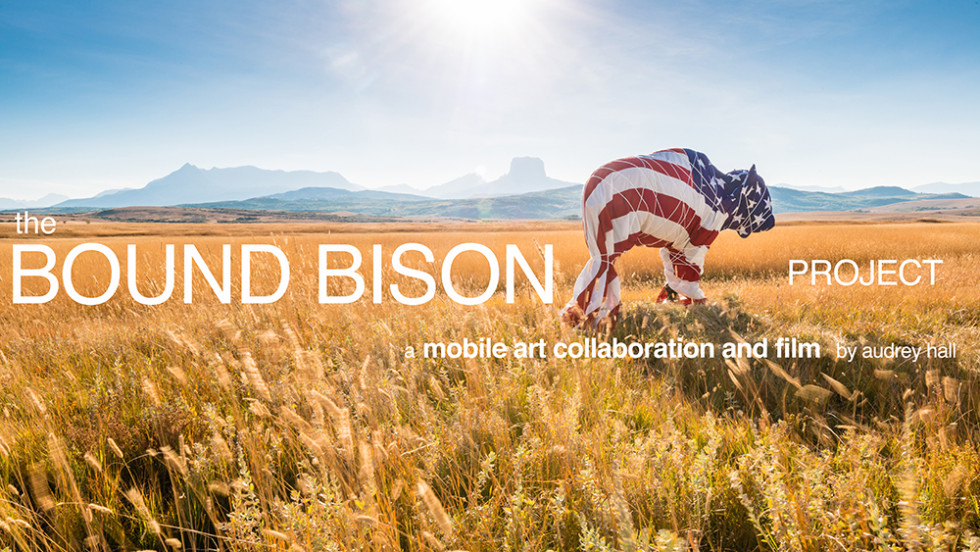 Bound Bison Series-FB Cover